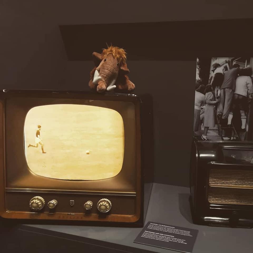 Mammut Tinka sitzt auf Fernseher im Fußballmuseum