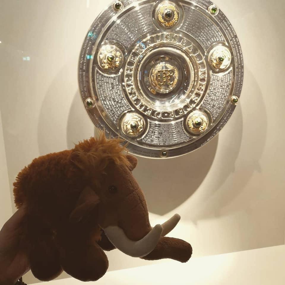 Mammut Tinka vor der Meisterschale
