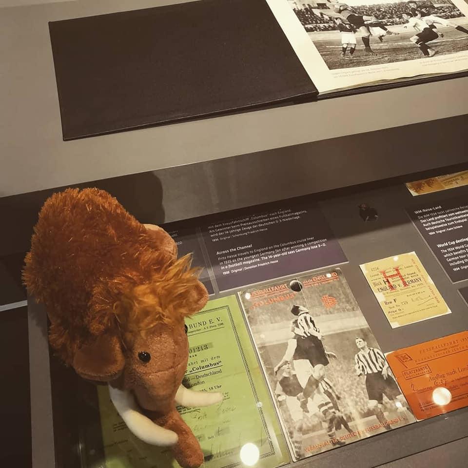 Mammut Tinka im Fußballmuseum