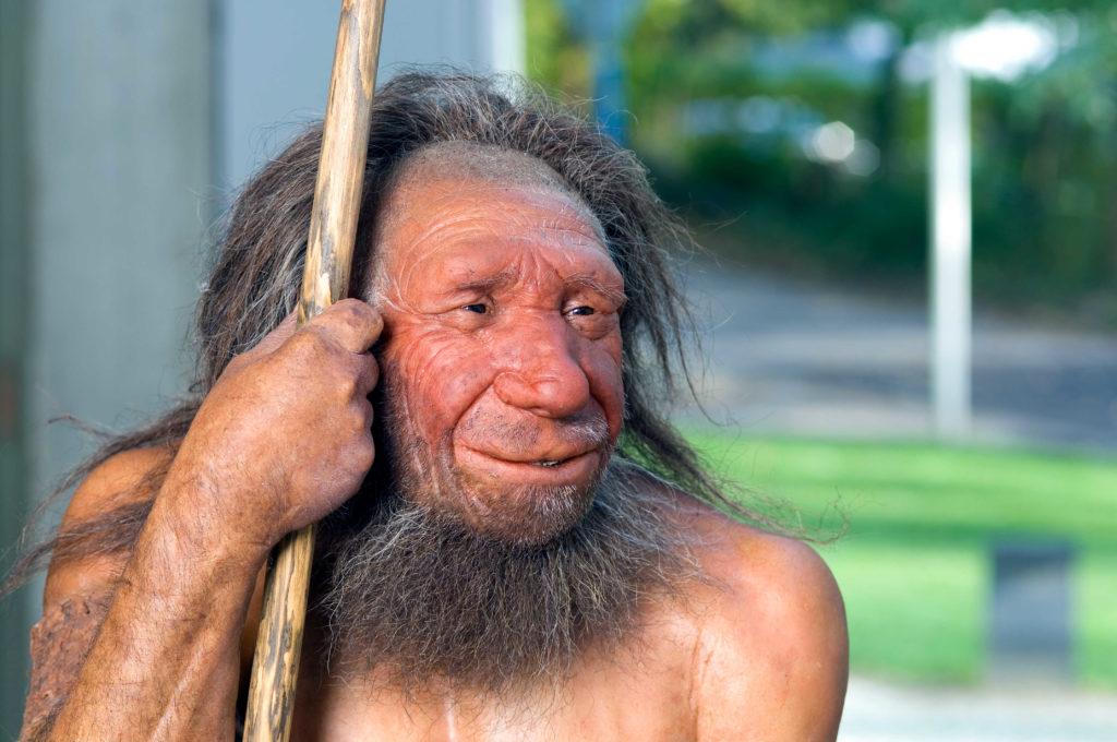 Neanderthaler Rekonstruktion